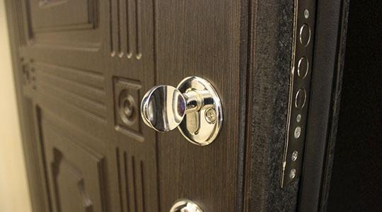 выбираем входную дверь в квартире