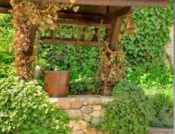Колодец в саду: декоративный или настоящий?