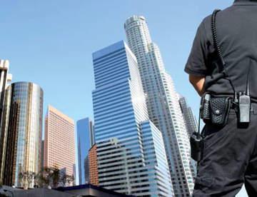Рекомендации по выбору охраны: способы и виды охраны
